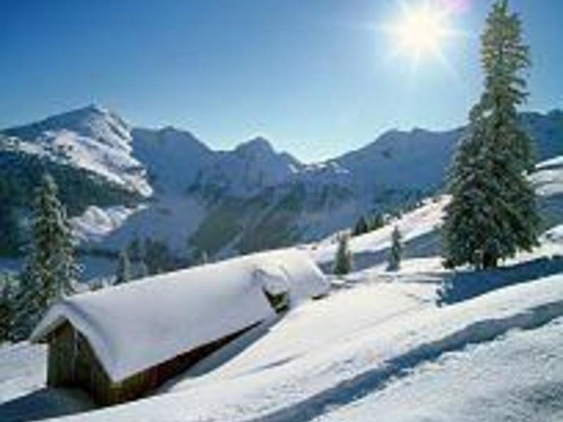 No Name Alpbachtal 2