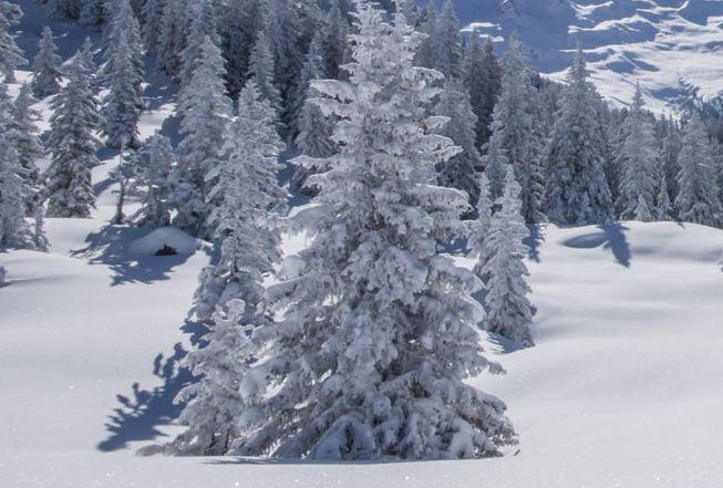 Lyžařské středisko Wagrain - fotografie