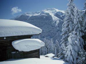 Lyžařská oblast Zillertal 3000 - Tux - fotografie